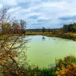 Forest lake in fall. Panorama — Stock fotografie
