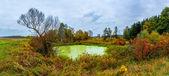 Lago del bosque en otoño. panorama — Foto de Stock