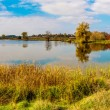 Forest lake in fall. Panorama — Stockfoto