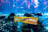Largest aquarium of the world in Dubai Mall — Stok fotoğraf