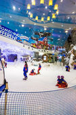 Ski Dubai is an indoor ski resort with 22,500 square meters of ski area — Stock Photo