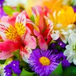 Spring flowers background on white background — Stock Photo #36038731