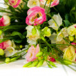Spring flowers background on white background — Stock Photo