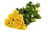 Grupp av färska gula rosor — Stockfoto