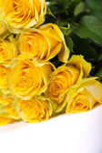 Group of fresh yellow roses — Foto Stock