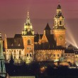 Stock Photo: Wawel Castle and Wistula