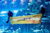Largest aquarium of the world — Foto de Stock