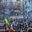 "Protest Against ""Dictatorship"" In Ukraine Turns Violent — Stock Photo #39175651"