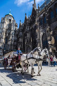 Horse-drawn Carriage in Vienna at the famous Stephansdom Cathedral — Stock Photo