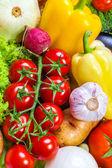 Group of fresh vegetables — Stock Photo