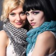Two lesbians in scarves, are hugging — Stock Photo #41341599