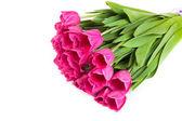 Rose bouquet de tulipes sur un blanc — Photo