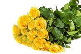 Group of fresh yellow roses — Stock Photo