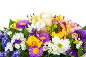 Фон Весенние цветы на белом фоне — Стоковое фото