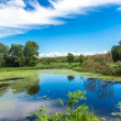 Panorama of summer morning lake — Stock Photo