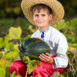 Smiling boy holding  big yellow pumpkin in hands — Stock Photo #42301617