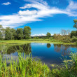 Panorama of summer morning lake — Stock Photo #42302173