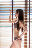 Fashion art photo of young sensual lady at the window — Stock Photo