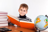 Cute schoolboy is reading a book — Stock Photo