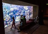 Enorme aquarium in een hotel atlantis in dubai op de palm-eilanden — Stockfoto