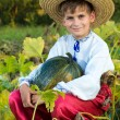 Smiling boy holding  big yellow pumpkin in hands — Stock Photo #48910735