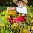 Smiling boy holding  big yellow pumpkin in hands — Stock Photo #48910803