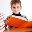 Cute schoolboy is reading a book — Stock Photo #48911957