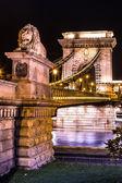 Night view of the famous Chain Bridge — Stock Photo