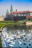 Wawel Castle and Wistula — Stock Photo
