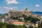 Budapest Royal Palace morning view. — Stock Photo