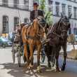 Horse-drawn Carriage in Vienna — Stock Photo