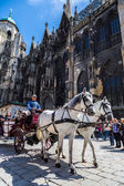 Horse-drawn Carriage in Vienna — 图库照片