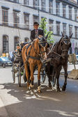 Horse-drawn Carriage in Vienna — Stockfoto