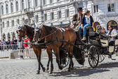 Horse-drawn Carriage in Vienna — Stok fotoğraf