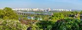 Landscape of national Botanic Garden — Stock Photo
