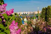View of the monastery Vydubitsky — Stock Photo