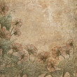 Old scratched paper with flowers background. — Stock Photo