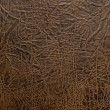 Leather texture closeup background. - Stock Photo