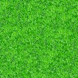 Seamlessly green grass texture background. — Stock Photo #21101149
