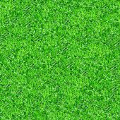 Seamlessly green grass texture background. — Stock Photo