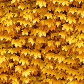 Seamlessly autumnal maple leafs pattern. — Stock Photo