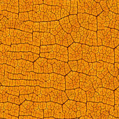 Yellow leaf texture — Stock fotografie