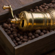 Metal pepper mill in wooden box with pepper — Foto Stock