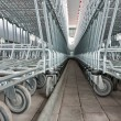 Empty shopping carts in a supermarket — Stock Photo