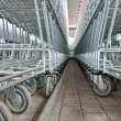 Empty shopping carts in a supermarket - Stock Photo