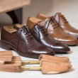 Brown men's shoes and shoe stratchers — Stock Photo