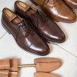 Stock Photo: Brown men's shoes and shoe stratchers