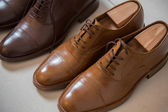 Brown men's shoes and shoe stratchers — Stockfoto