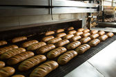 Hot baked breads on a line — Stockfoto