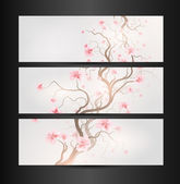 Design Sakura — Stock Vector